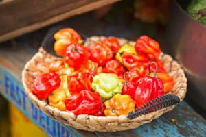 Scotch Bonnet Pepper: The Caribbean Chili Of Choice
