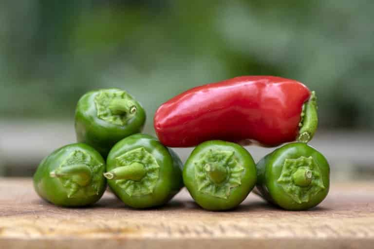 What is the Scoville Scale? The Story Behind The Heat