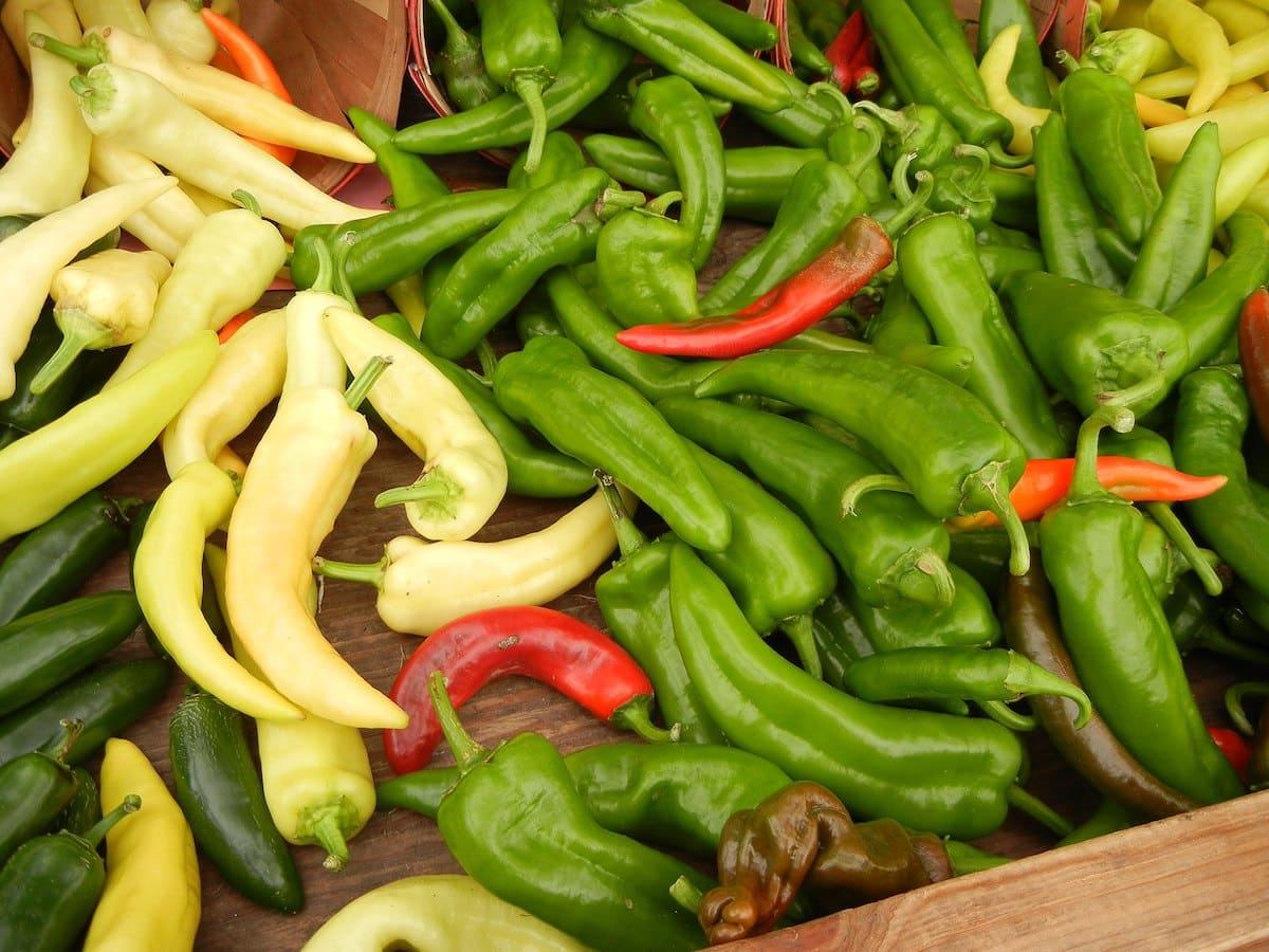 Anaheim Pepper: A Versatile Mild Chili