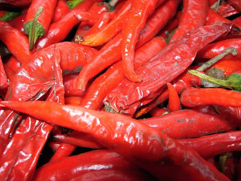 Malagueta pepper