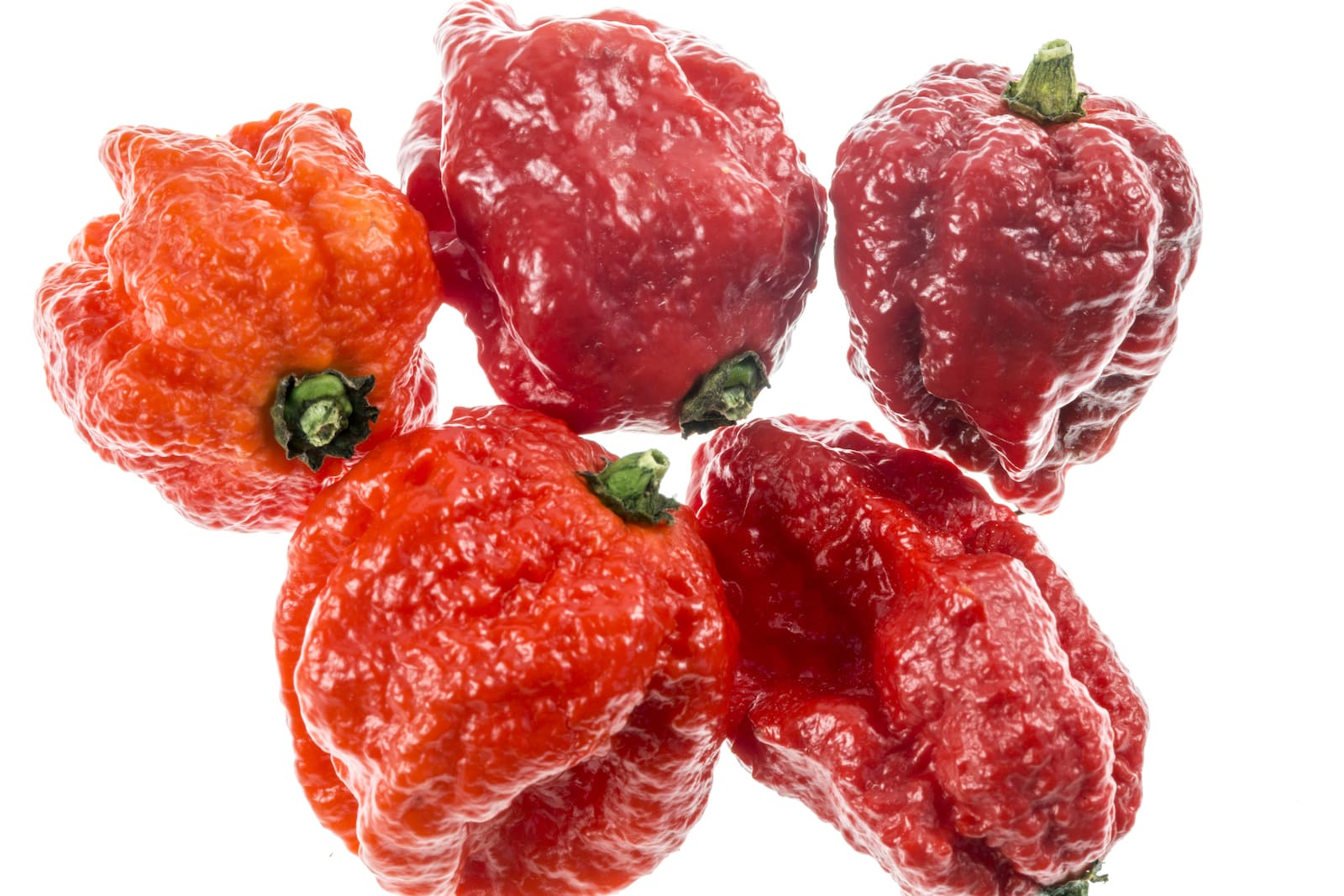 The Carolina Reaper: Serious Sizzle From The South