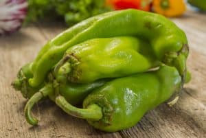 Hatch pepper