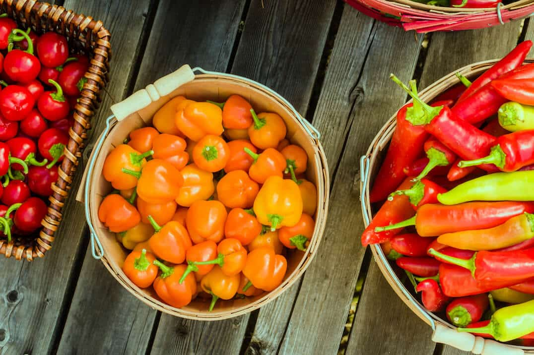 THE Hot Pepper List: Know Your Spice