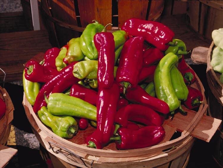 Cubanelle Pepper: Simmering Sweet