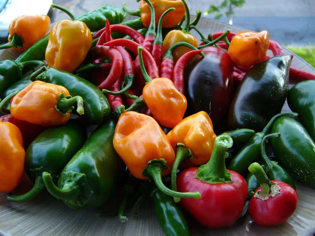 Fruit Or Vegetable? What Is A Chili Pepper?