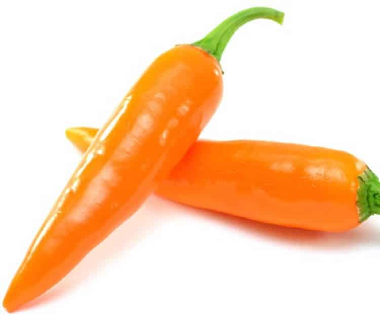 Bulgarian Carrot Pepper: Spicy, Crisp, And Fruity