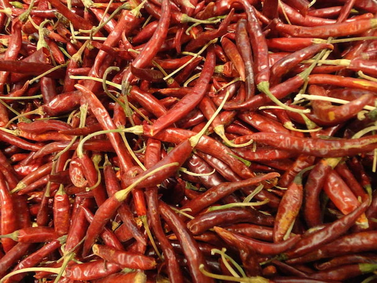 Chile De Àrbol: Infuse The Wow Factor