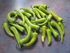Banana pepper