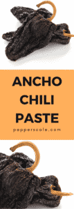 Ancho Chili Paste