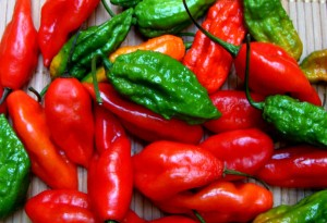Cooking With Ghost Peppers-1