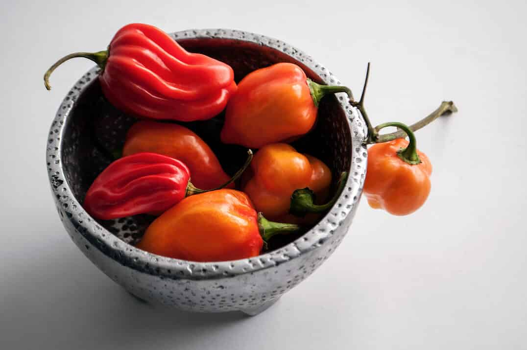 Capsicum Chinense: The Hottest Peppers On Earth