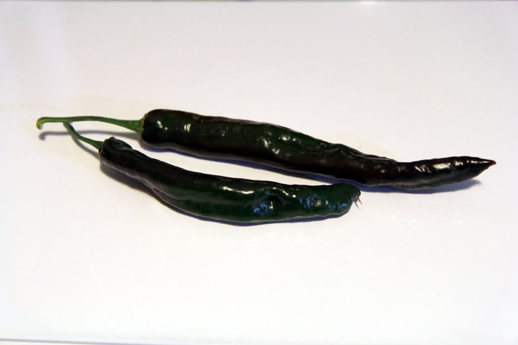 Chilaca Pepper
