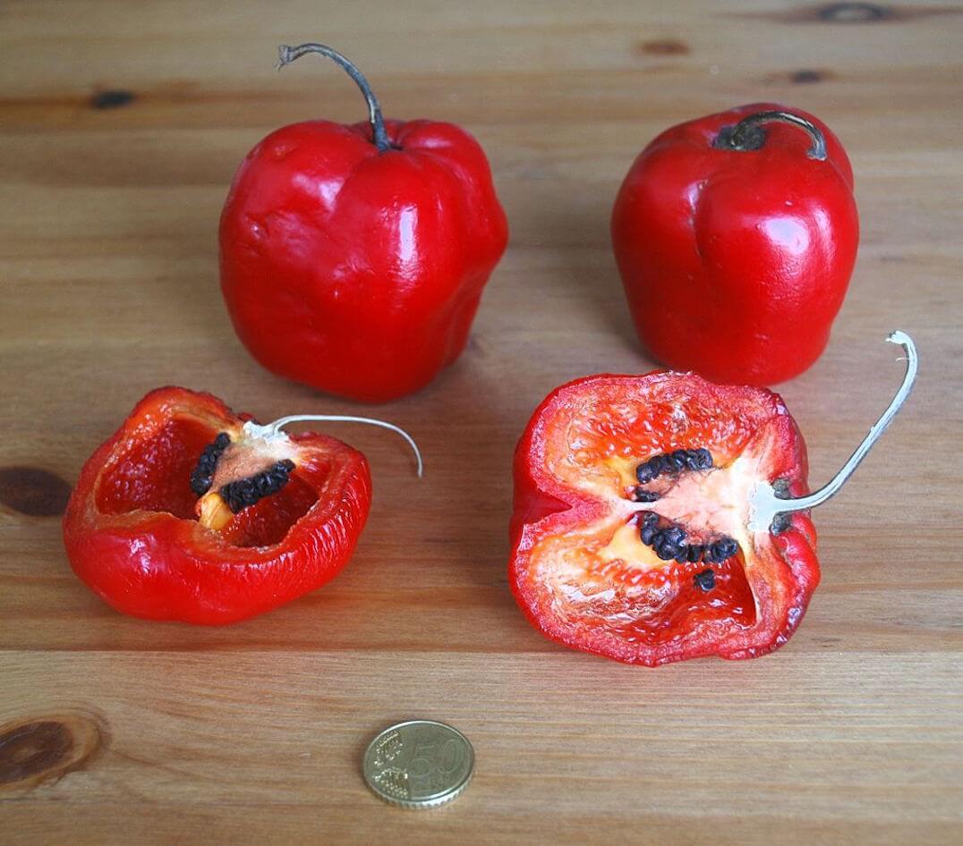 Capsicum Pubescens: Distinctively Juicy