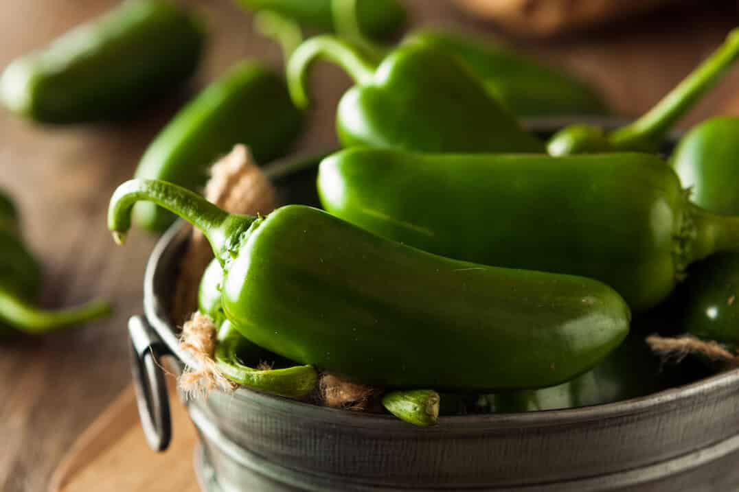 Seven Must-Know Mexican Peppers: PepperScale Roundup
