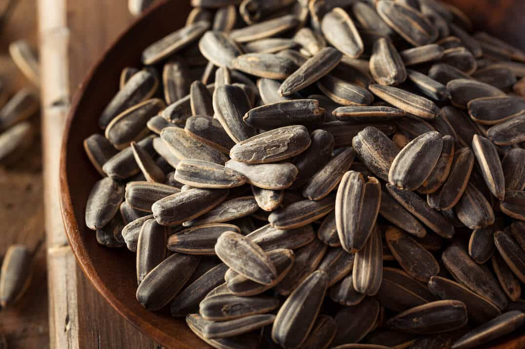 Old Bay Sunflower Seeds
