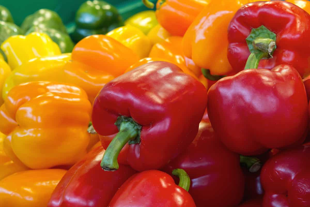 Bell Pepper Benefits: How Healthy Are They?