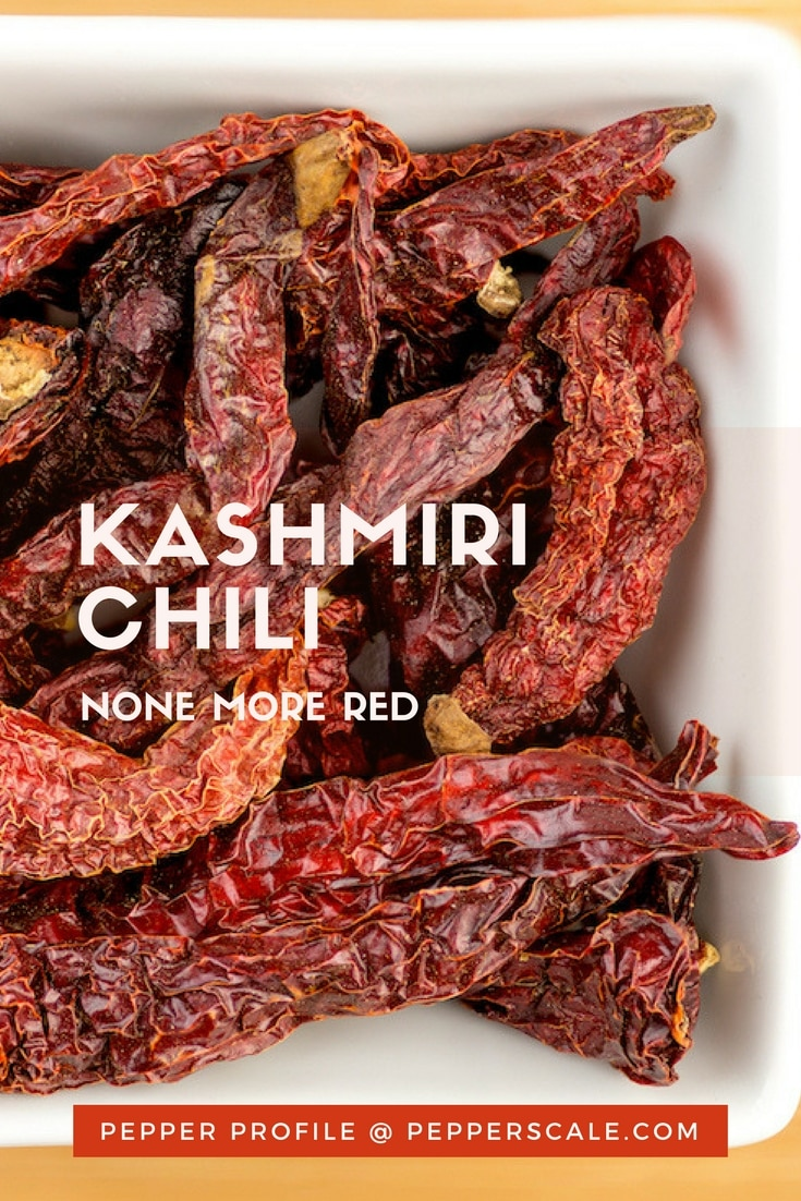 There are few fruits or vegetables as colorful as chilies as a whole, though the Kashmiri chili puts even the most colorful hot pepper to shame.