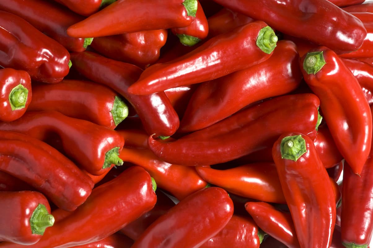 Flavor Boost! How To Keep Peppers Fresh