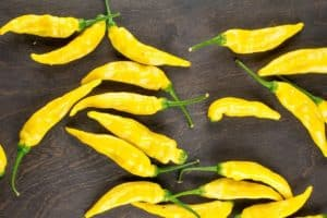 Aji Pineapple: Tropical Fare