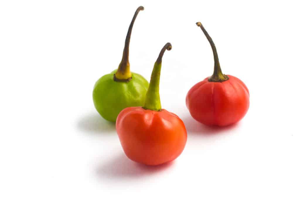 Bod'e Pepper