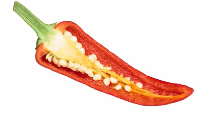 Pepper Anatomy: What's Inside Your Chili?