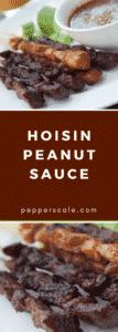 Hoisin Peanut Sauce