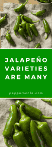 Jalapeno Varieties Are Many