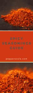 Spicy Seasonings Guide