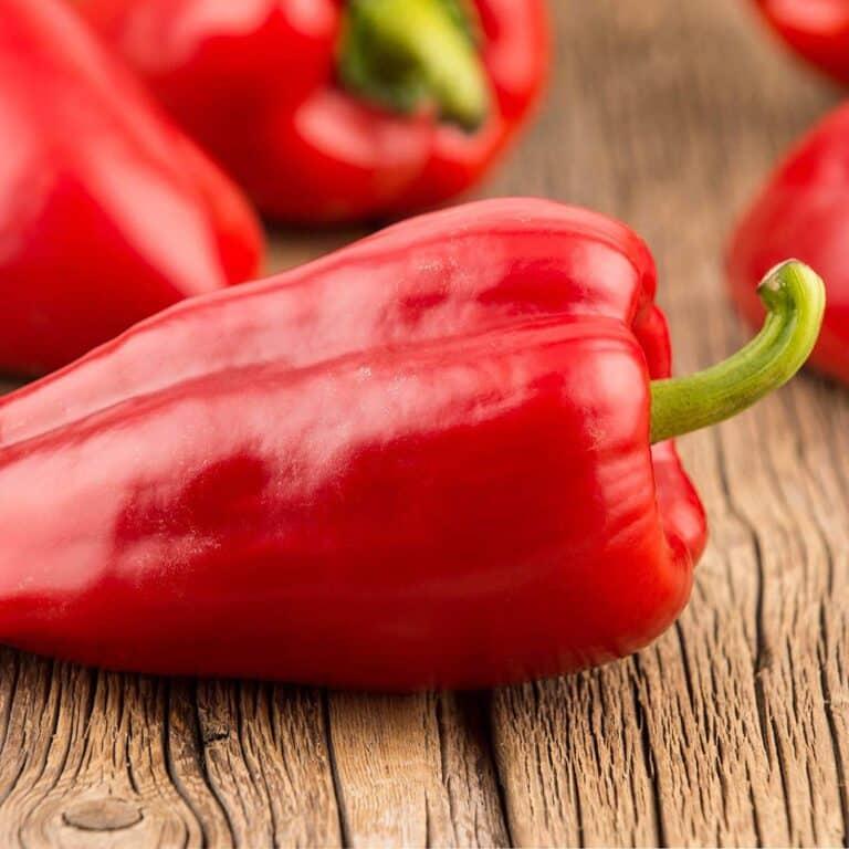 Mariachi pepper