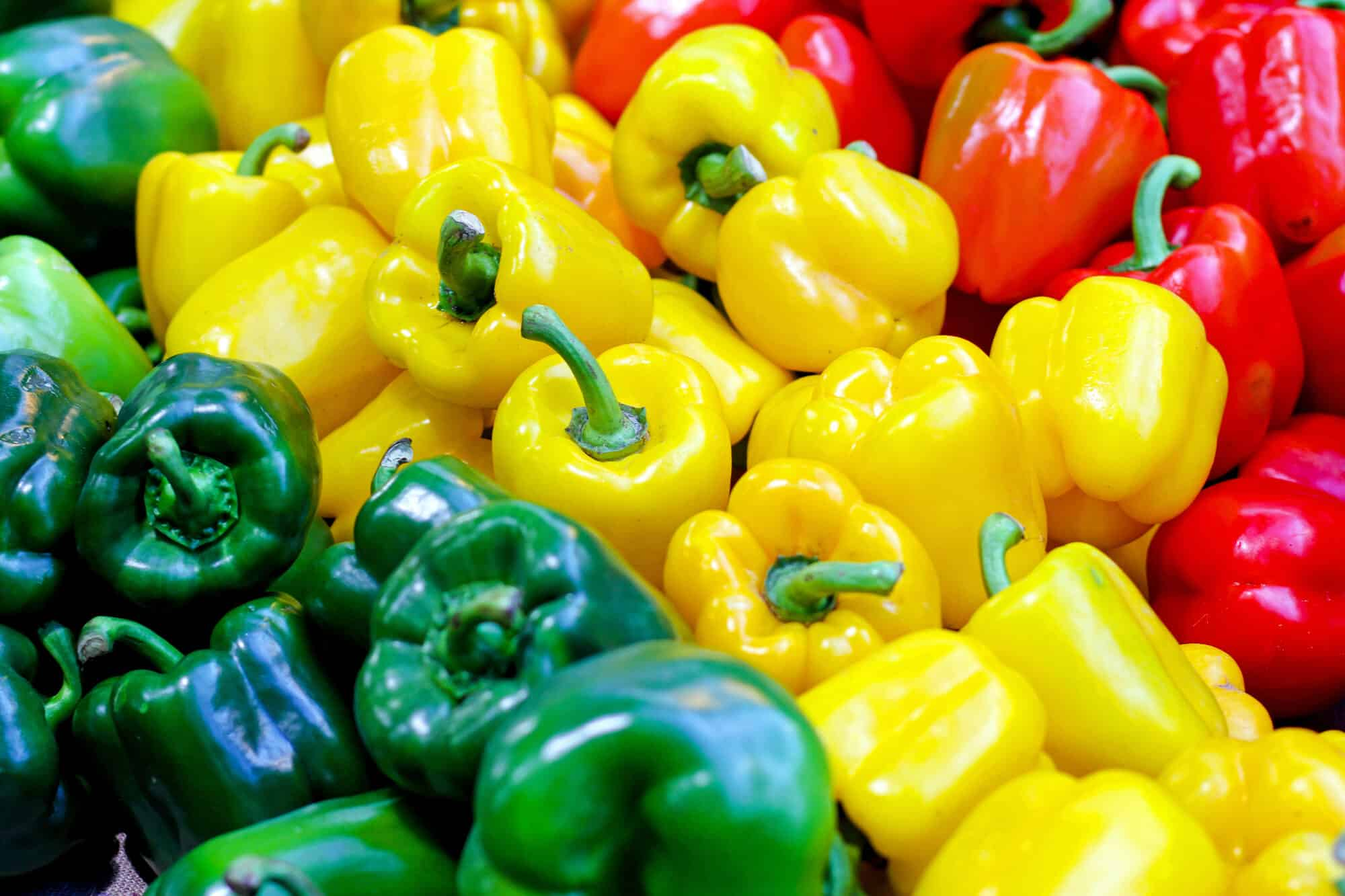 Six Bell Pepper Facts That You Should Know