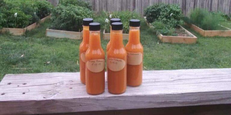 Fermented Mango Habanero Sauce