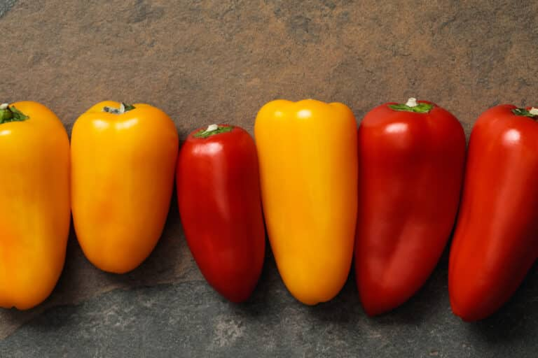 carbs in peppers