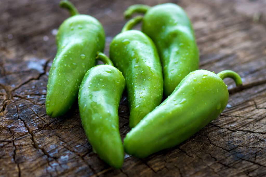 Jalapeno not spicy
