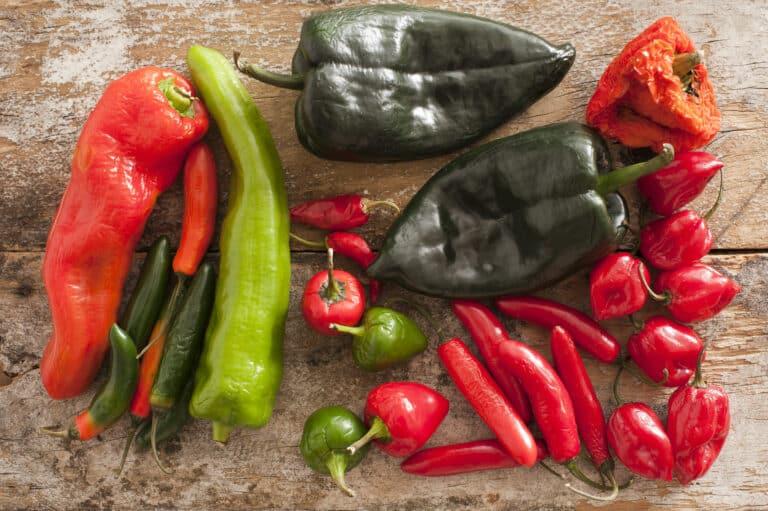 Fiber in peppers