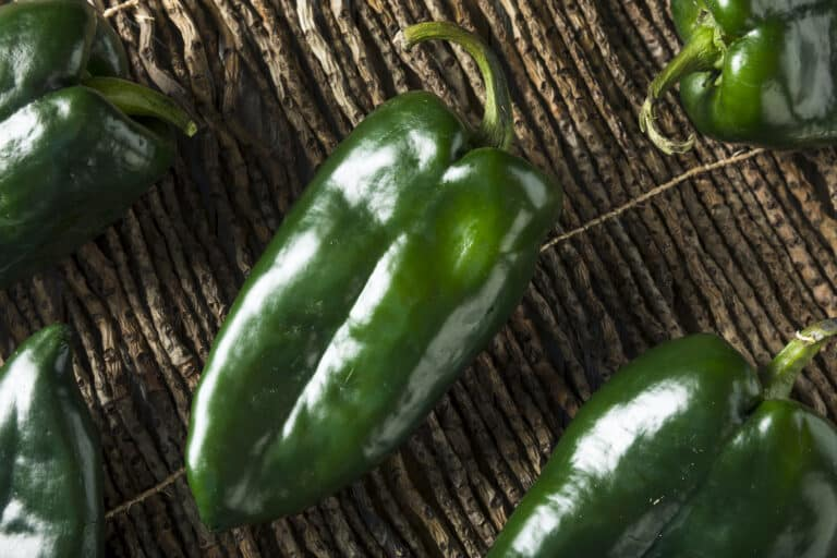 what to do with poblano peppers