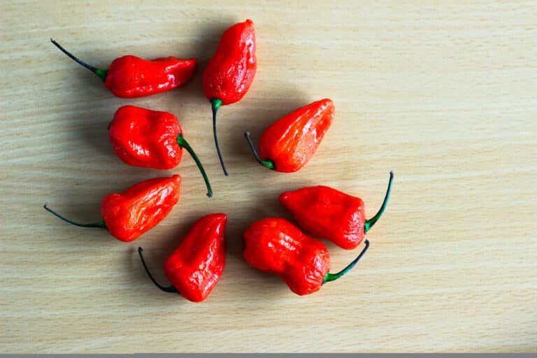 Ghost pepper quiz
