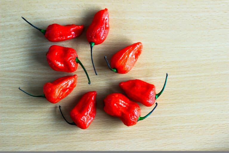 Ghost pepper quiz